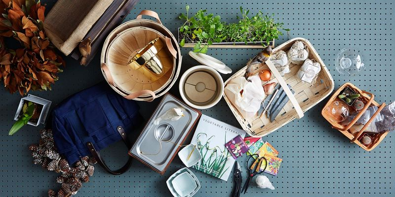 The Essential Tools for a Thriving Indoor Garden