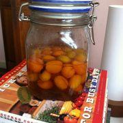 B62adc2d da3d 4827 ae13 449edc6c21f2  1390 kumquats in brandy