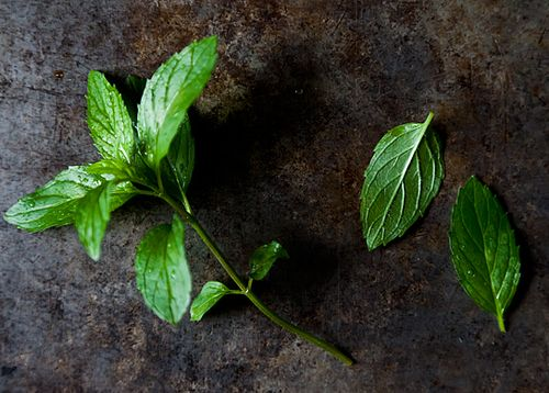 Your Best Recipe with Mint