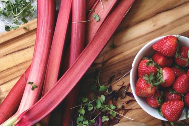 Micro-green Salad // Homemade Rhubarb Strawberry Dressing