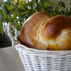 Easter Bread  ( Bulgarian Kozunak )