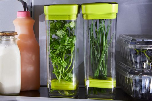 Fresh Herb Storage (Set of 2)