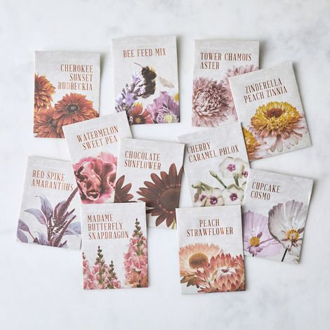 Flower Arranging Seed Starter Set