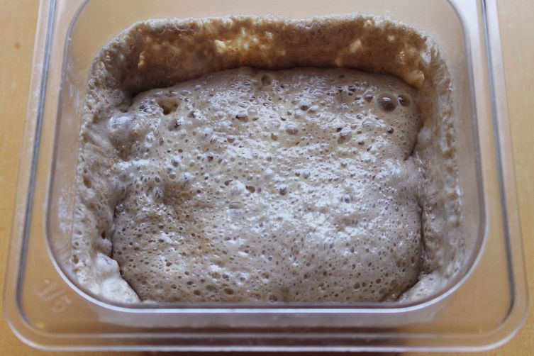 Basic Sourdough Starter