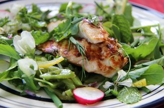 608c5594-1b2e-4d08-8872-0003deba201c--fresh_summer_chicken_salad_with_a_fistful_of_herbs