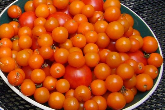Kick-Ass Tomato Salad