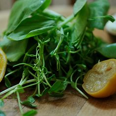 Pea Shoots and Sugar Snaps with Preserved Lemon Cream