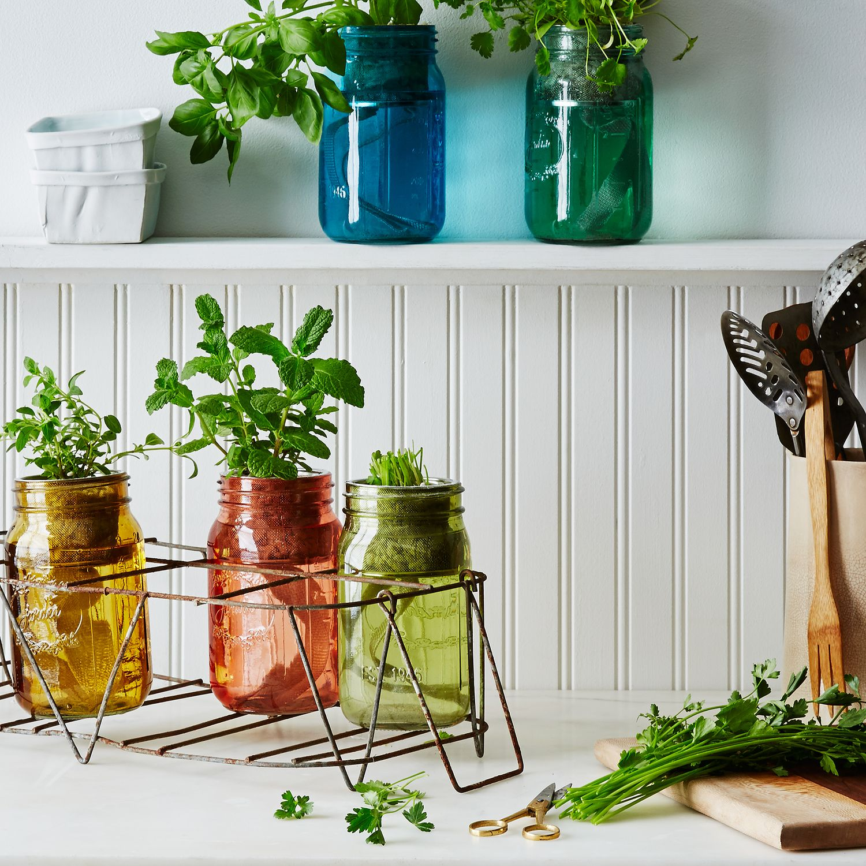Kitchen Bench Herb Garden: Garden Jar Herb Kit On Food52