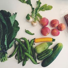 The Best CSA Share So Far (& What We Did with It)
