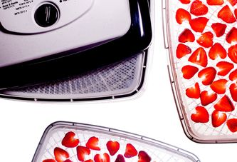 Why You'll Want a Dehydrator—Even If You Don't *Need* One