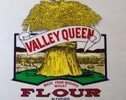 E0b3a265 e686 4dcf 9e03 87ff26302526  valley queen