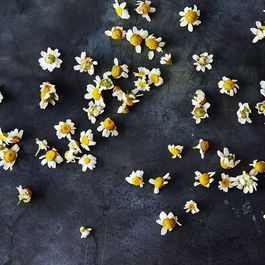 Just Relax: 10 Soothing Ways to Use Chamomile