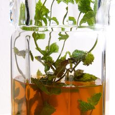 Iced Mint Jasmine Tea