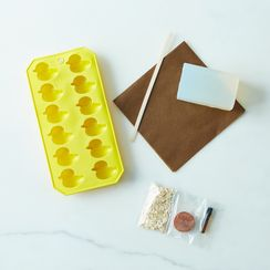 (OLD) DIY Duck Soap Kit