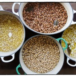 24146a03-e991-4c55-a86f-7c709889a41a--beans_hirsheimer_for_food52