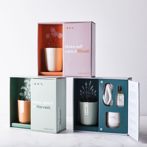 Live Well Gift Set