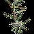 Bb19f9fd c732 4ee7 9c3d 8048ef42209a  olive2001sm