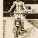 Carol Jones Scheer