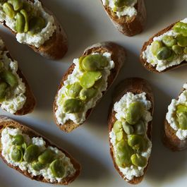 Fava and Fresh Ricotta Crostini
