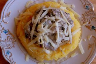 55694b06-f6c5-4b32-8fa2-1b5a734d6078.mushrooms_in_cream.over_polenta