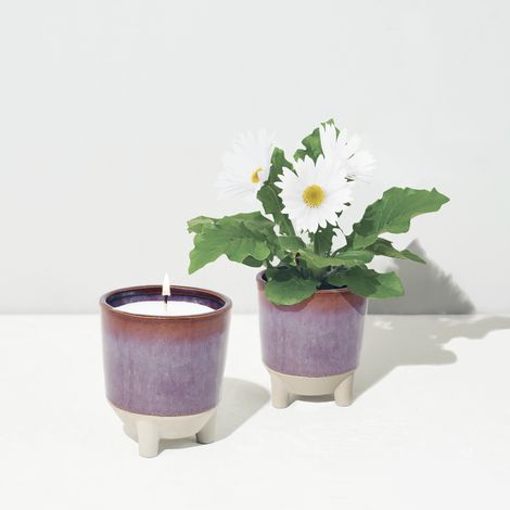 Glow & Grow Scented Candle