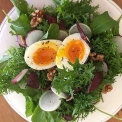Mustard Green, Radish and Duck Salad