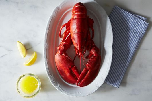 How I Break Down a Lobster (Without Losing a Finger or My Mind!)