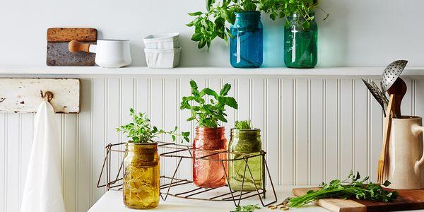 0daee315 ca47 4318 9faa f771421fb7a1  2016 0321 modern sprout garden jar herb kit carousel bobbi lin 2731