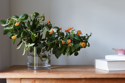 5 Tips for Better Flower Arrangements at Any Budget or Skill Level