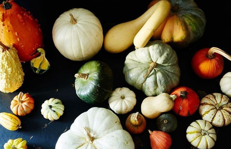The Ultimate Guide to Types of Winter Squash (for Your Front Stoop & Your Stew!)