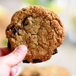 Vegan Oat Bran Chocolate Chip Cookies