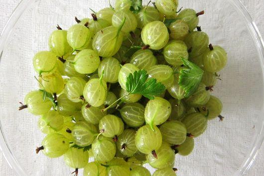 Gooseberry Elderflower Syllabub