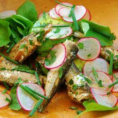 Sardine, Avocado and Radish Salad with Upland Cress
