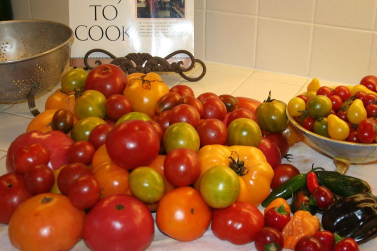 COUNTERTOP HEIRLOOM TOMATOES WITH BRIE