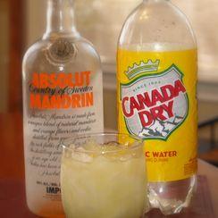 Absolut(ely) Mandrain Vodka & Tonic