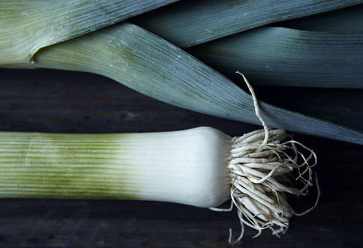 Community Picks Recipe Testing -- Leeks