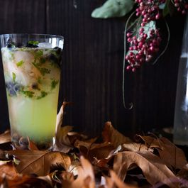 A Slightly Spooky, Slightly Silly Witch's Brew Cocktail for Halloween