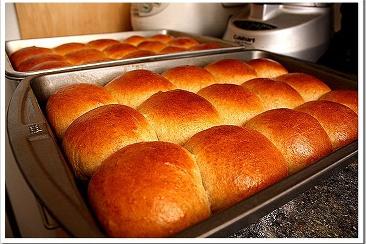Soft pull-apart wheat rolls, with sourdough starter or active dry yeast