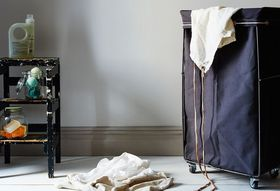 Why Your Dirty Laundry Could be Attracting Bed Bugs