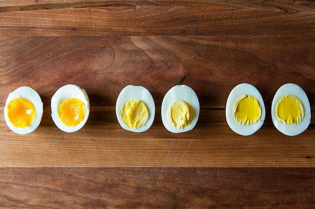 egg compare
