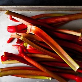 Your Winter Rhubarb Was Grown in the Dark (and Harvested by Candlelight!)