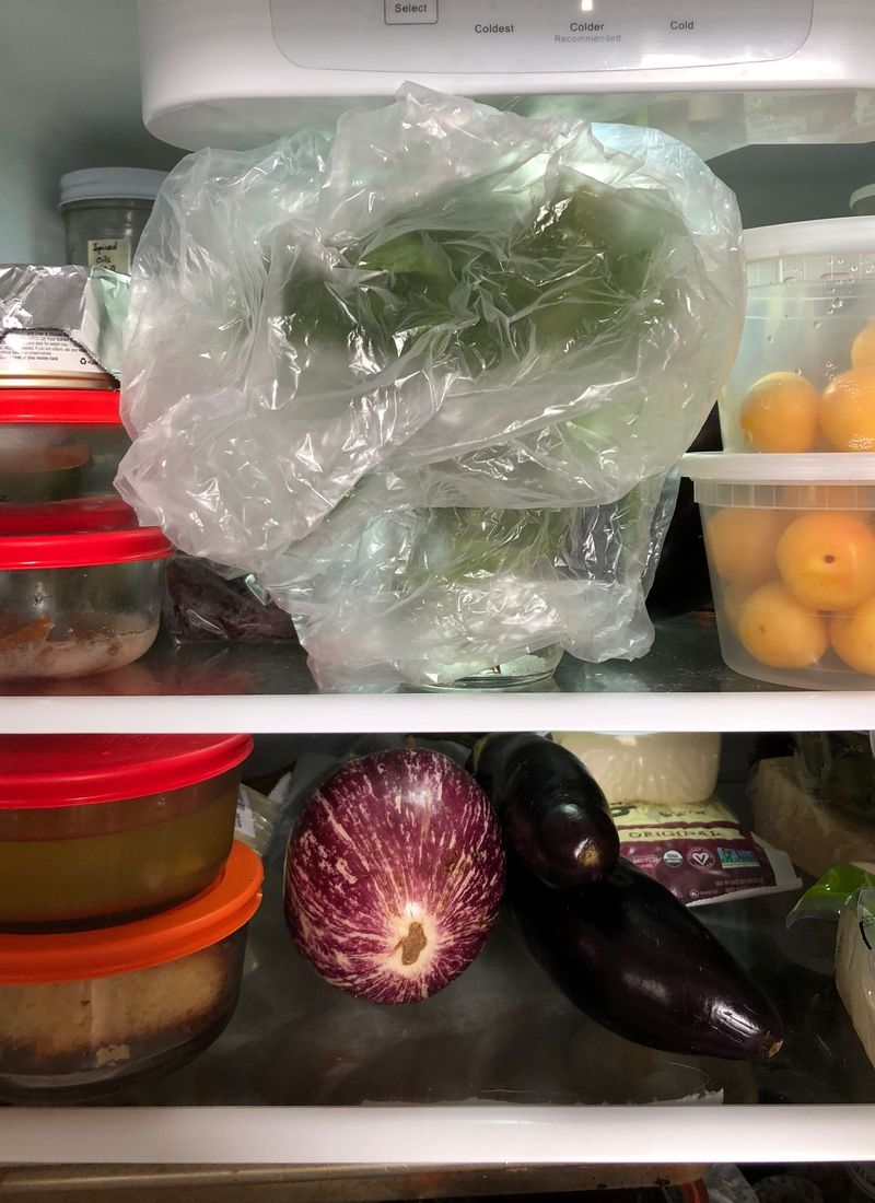A rare peek into the inside of my fridge. Can you spot the basil, hiding in plain sight?