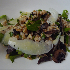 Farro Salad with Mushrooms and Pecorino Cheese