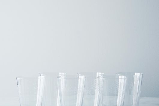 Etched Botanical Glass (Set of 6)
