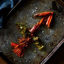 Eating the Cosmos: Your December Horoscope