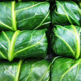 63b2fed5 d764 429f 89ff a8584666960e  stuffed collards food52