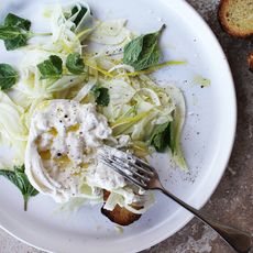 Lemon + Olive Oil Marinated Fennel with Burrata + Mint