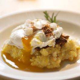 Polenta with Mushroom 'Ragu', Poached Farm Egg, & Garlic Breadcrumbs