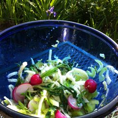 Fennel, Celery, and Wilted Radish Salad with Capers in a Citrus Vinaigrette