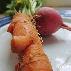 Crispy Carrot and Radish Slaw